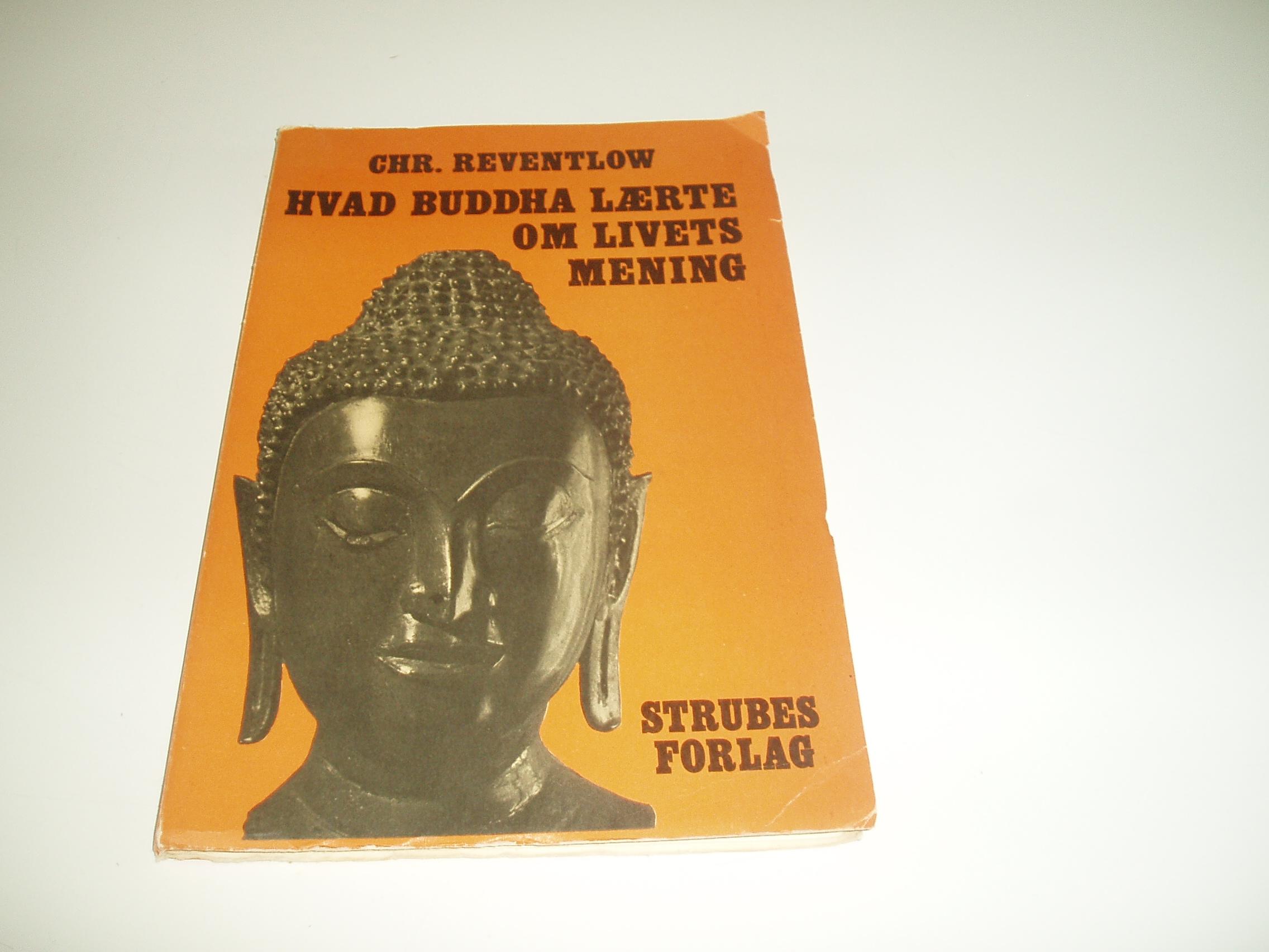 Hvad Buddha lærte om livets mening